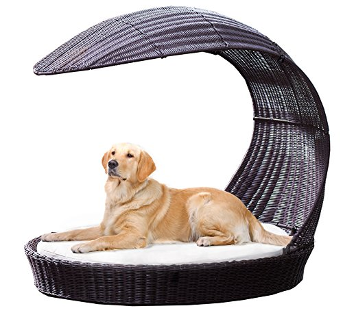 Outdoor Dog Chaise Bed n Espresso, X-Large