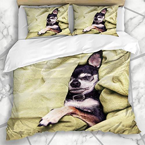 Bettbezug-Sets Hündchen Arm Niedlich Chihuahua Nickerchen Hund eingeschlafen Authentisch Best Friend Breed Design Maulkorb Mikrofaser Bettwäsche mit 2 Kissen Shams Pflegeleicht Antiallergisch Weich Gl