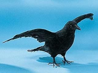 StealStreet CK161 Crow Collectible Bird Raven Figurine Decoration Model Statue Figure