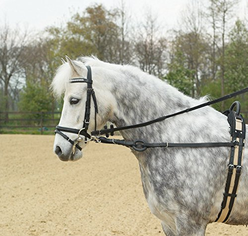 Ausbindezügel BASIC, Pony, schwarz/NP
