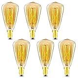 Vintage Edison Light Bulbs, E12 Candelabra Light Bulbs,...