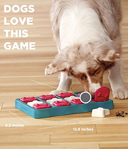Outward Hound 67333 Nina Ottosson Dog Brick Interactive Puzzle Game Toy for Dogs, Blue