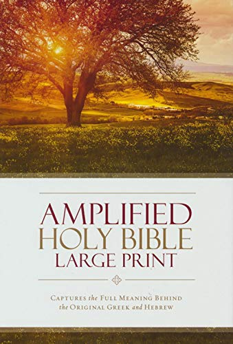 Amplified Holy Bible Easier to Read Large Print