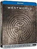 51rDY+ObguS. SL160  - Westworld Saison 2 : Un acteur de Vikings devient un régulier du parc