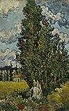 AMANUO Van Gogh Impresiones Pinturas Famosas sobre Lienzo Paisaje 50X80 cm Cuadros Enrollada - Cipreses Y Dos Mujeres