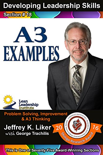 Developing Leadership Skills 18:: A3 Examples - Module 2 Section 11 (English Edition)
