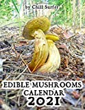 Edible Mushrooms Calendar: Illustrated Calendar with Beautiful and Wild Edible Forest Mushrooms (2021 Psychedelic Art Magic Mushrooms Calendars Series)