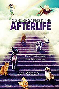 Signs From Pets In The Afterlife  Identifying Messages From Pets In Heaven