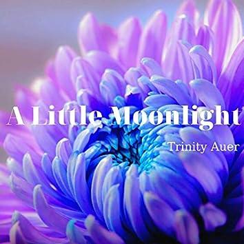 A Little Moonlight