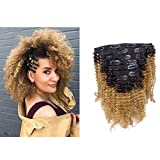 Anrosa Kinkys Curly Clip in Hair Extensions Human Hair 3C 4A Afro Kinky Curly Clip ins Natural Hair Real Remy Thick Human Hair Extensions for Black Women (14 inch, Ombre #1B/27)