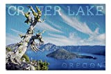 Lantern Press Crater Lake National Park, Oregon - Daytime Aerial View of Lake 81221 (1000 Piece Premium Jigsaw Puzzle for Adults and Family, 19x27)