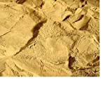 2 kg Lehmpulver, Naturlehm, für Terrariensand Mischung