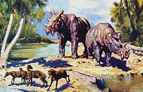 Lsping Puzzle 500 pezzi Eocenni norteamérica Paisaje Animal Animales Antiguos 52x38cm