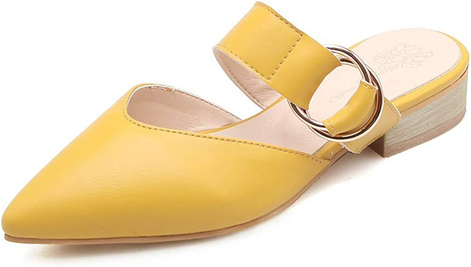 Eora-2sl Women Sandals Pointed Toe with Buckle Square Heel Women's Mules Sweet Ladies Dress shoes