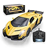Officially Licensed RC Series, 1:24 Scale Electric Sport Racing Hobby Toy Car Lamborghini Model Vehicle for Boys Girls 3 4 5 6 7 8 9 Years Old Birthday Gifts