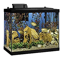 Best Fish Tanks For You In 2019 - Top 10 reviewed 10