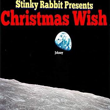 Stinky Rabbit Presents Christmas Wish