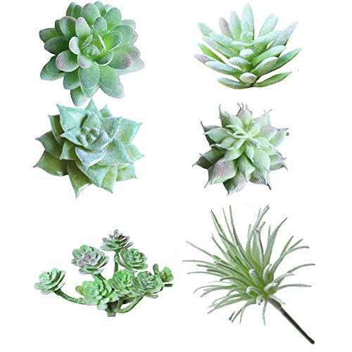 Soviton – Mini-Sukkulenten, künstliche Sukkulenten, unbepflanzt in grünem Blumenarrangement, 6 Stück