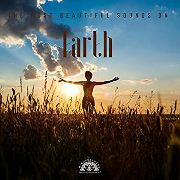 The Most Beautiful Sounds on Earth (Meditation, Mindfulness, Sounds of Nature: Forest, Birds, River, Ocean Waves, Rain)