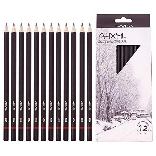 Professional Drawing Sketch Pencils Set, 12 Pieces Drawing Pencils, 8B,7B, 6B, 5B, 4B, 3B, 2B, B, HB, F, H, 2H Graphite Pencils, Ideal for Drawing Art, Sketching