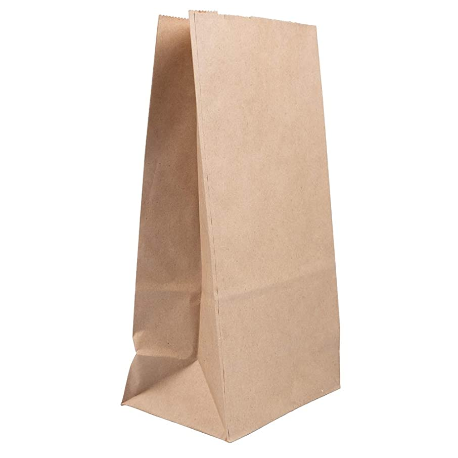 JAM PAPER Durable Snack/Lunch Bags - Large (6 x 11 x 3 3/4) - Brown Kraft Grocery Bags 100% Recycled - 25/Pack