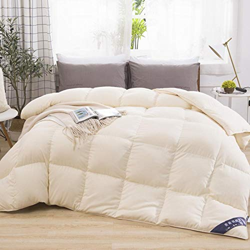 CHOU DAN Relleno NóRdico para Invierno Golden,Non-allergenic Soft Cotton,Duvet Comforter Twin Hotel 2021 New 95 White Goose Down Quilt 180x220cm 2500g