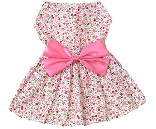 Petroom Elegant Floral Puppy Dog Dress , Sundress...