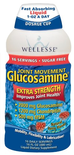 Wellesse Joint Movement Glucosamine with Chondroitin + MSM, Natural Berry Flavor, 16-Ounce (480 ml) (Pack of 2)