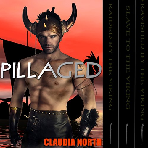 Pillaged audiobook cover art