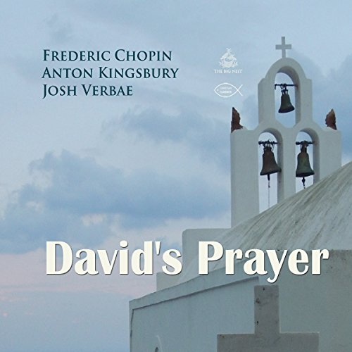 David's Prayer audiobook cover art