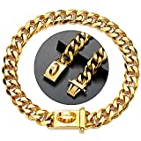 Gold Dog Chain Cuban Link Dog Collar