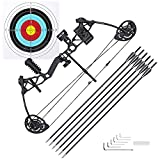 AW Youth Compound Bow Kit Right Hand Arrows Archery Outdoor Hunting 16 to 28 Lbs