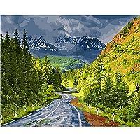 数字油絵 Diy デジタル 油絵子供大人初心者ギフDIY 数字油絵 のための数字によるペイント 家の壁アート落書き装飾カスタムギフト- 高速道路の風景 40x50 cm(フレームレス)