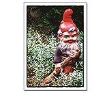 Postkarte / Karte Nr 287 - Titel: 'Kehrwoche' - Motiv: Gartenzwerg mit Besen - von tom bäcker - MEHRERE KARTEN? MENGENRABATT? - SUCHE: tom bäcker Set