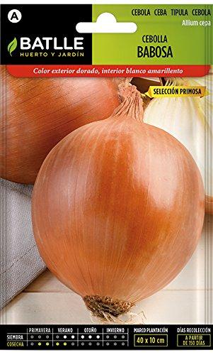 Semillas Hortícolas - Cebolla Babosa sel. Primosa - Batlle