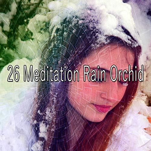 26 Meditation Rain Orchid