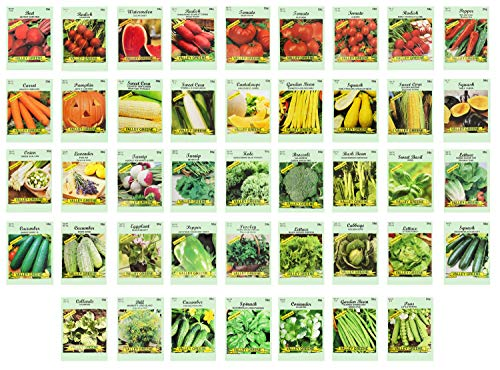 Set of 43 Assorted Vegetable & Herb Seeds - 43 Varieties - Create a Deluxe Garden All Seeds are...