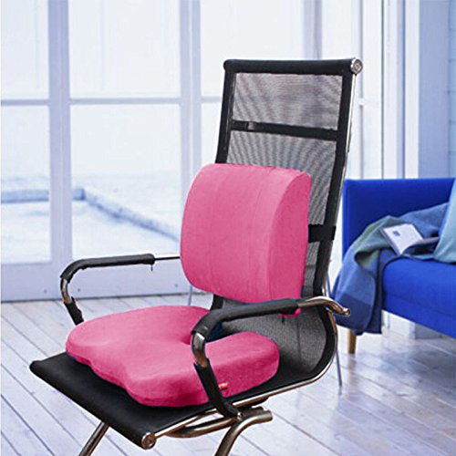 BookishBunny 2pc Memory Foam Seat Chair Waist Lumbar Back Support Cushion Pillow Car Office Home (Hot Pink)