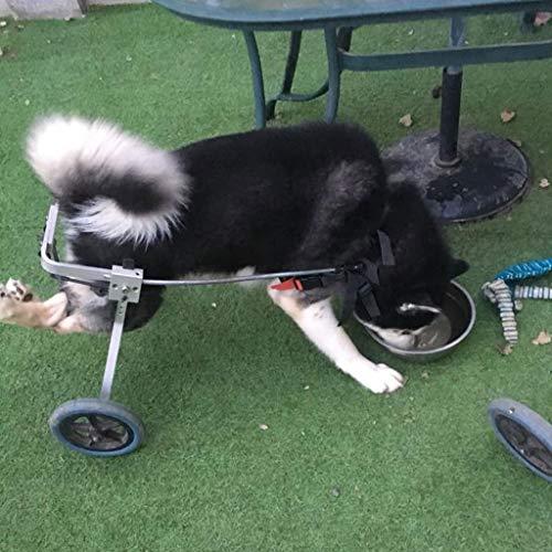 Dog Pet Wheelchair, Best Friend Dog Wheelchair for Medium Dogs Adjustable Stainless Steel Cart Cat Walking Frame Wheelchairs (17-25 Kg) Dog Pet Stroller