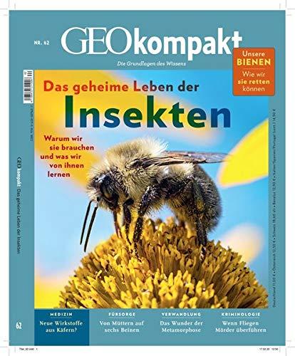 GEOkompakt / GEOkompakt 62/2020 - Das geheime Leben der Insekten: Die Grundlagen des Wissens