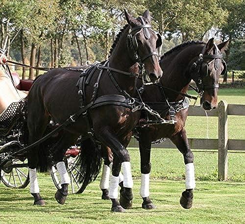 Harnais Leather Tech Ideal 2 en 1 attelage à 2 chevaux - chevaux de trait, noir - brun, antidérapantes, à étranglement, sans reculement