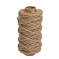 Tenn Well Strong Natural Jute Twine, 4mm Thick 66 Feet Long Jute String Rope Roll for Garden, Arts & Crafts, Home Decor, Packaging