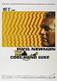 Cool hand Luke de Paul Newman en la película A3 cartel/impresión/foto 280GSM Papel fotográfico satinado