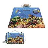 XINGAKA Manta de Picnic Impermeable,Coloridos Peces de colonias de Coral sumergidos en el Tranquilo mar Rojo Poco Profundo,Alfombra Plegable para Camping Parque