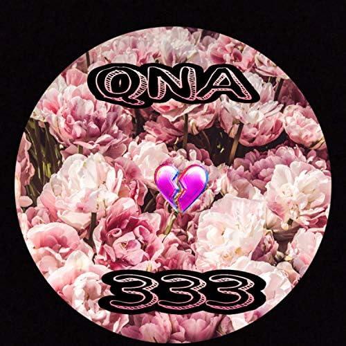 Qna333