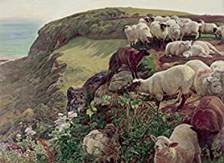 Our English Coasts (Strayed Sheep) 1852 William Holman Hunt (1827-1910 British) Oil on canvas Tate Gallery London England Poster Print (24 x 36)