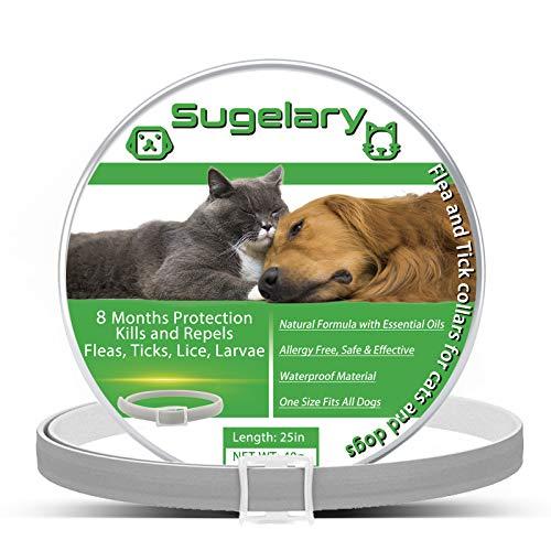 Sugelary Collar Antiparasitario para Perros Gatos, Protección de 8 Meses Ajustable Impermeable Collar Antiparasitario para Perros Gatos...