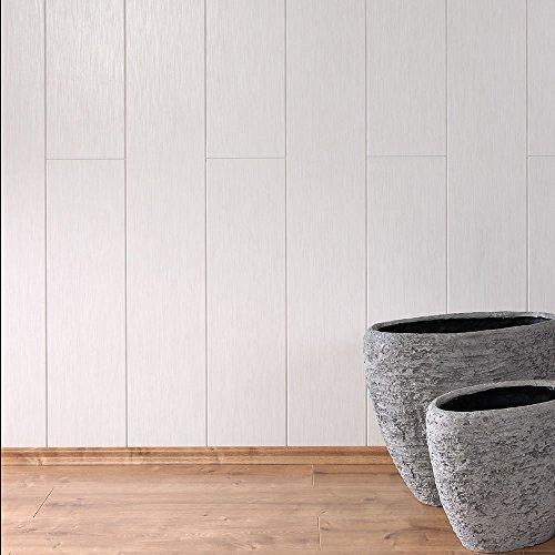 Avanti Wandpaneel und Deckenpaneel Allure Weiss 2200 x 203 x 10 mm