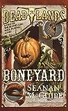 Deadlands: Boneyard: 3