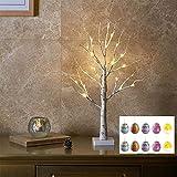 EAMBRITE Árbol de Luz LED 60cm Abedul 24LT Luz Blanca Cálida con 10 Adornos Decoración del Hogar Cumpleaños Regalo Aniversario (Colgantes de Huevos)